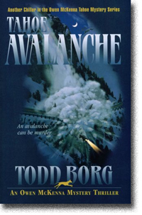 Tahoe Avalanche by Todd Borg