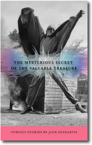 The Mysterious Secret of the Valuable Treasure by Jack Pendarvis